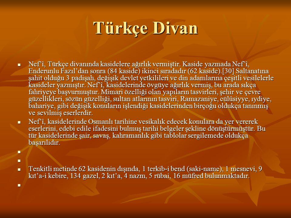 Türkçe Divan Nef'î, Türkçe divanında kasidelere ağırlık vermiştir. Kaside yazmada Nef'î, Enderunlu Fazıl'dan sonra (84 kaside) ikinci sıradadır (62 ka