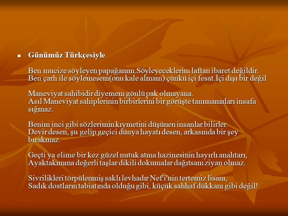 Günümüz Türkçesiyle Ben mucize söyleyen papağanım.Söyleyeceklerim laftan ibaret değildir.
