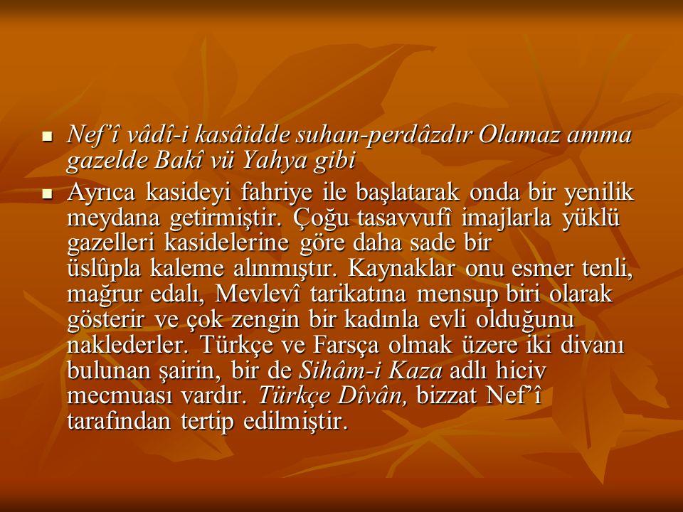 Türkçe Divan Nef'î, Türkçe divanında kasidelere ağırlık vermiştir.
