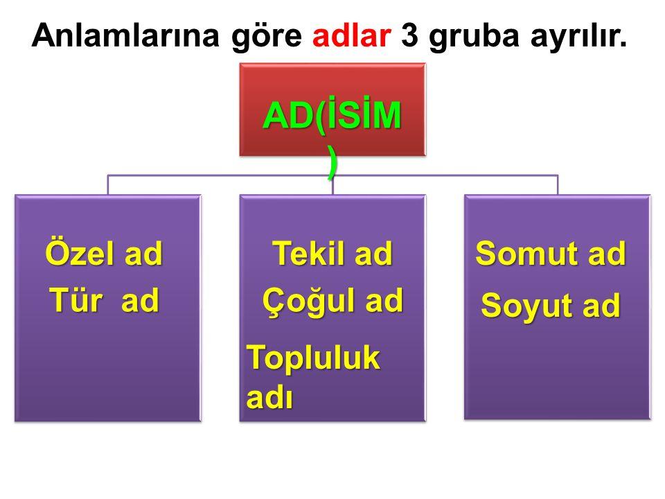 Anlamlarına göre adlar 3 gruba ayrılır. AD(İSİM ) Özel ad Tür ad Tekil ad Çoğul ad Topluluk adı Somut ad Soyut ad
