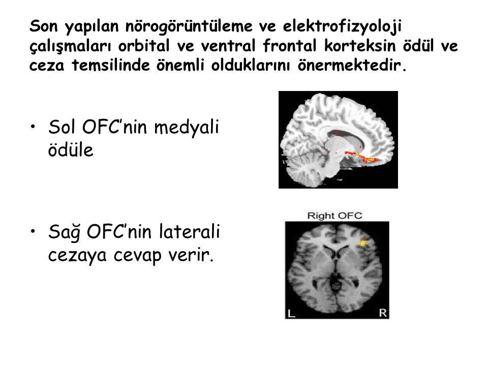 Son yapılan nörogörüntüleme ve elektrofizyoloji çalışmaları orbital ve ventral frontal korteksin ödül ve ceza temsilinde önemli olduklarını önermektedir.