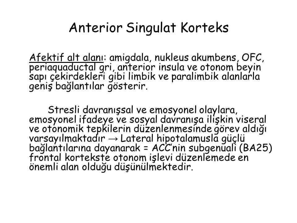 Anterior Singulat Korteks Afektif alt alanı: amigdala, nukleus akumbens, OFC, periaquaductal gri, anterior insula ve otonom beyin sapı çekirdekleri gibi limbik ve paralimbik alanlarla geniş bağlantılar gösterir.