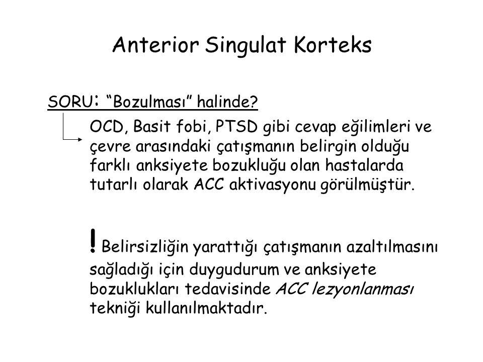 Anterior Singulat Korteks SORU : Bozulması halinde.