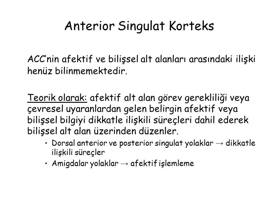 Anterior Singulat Korteks ACC'nin afektif ve bilişsel alt alanları arasındaki ilişki henüz bilinmemektedir.