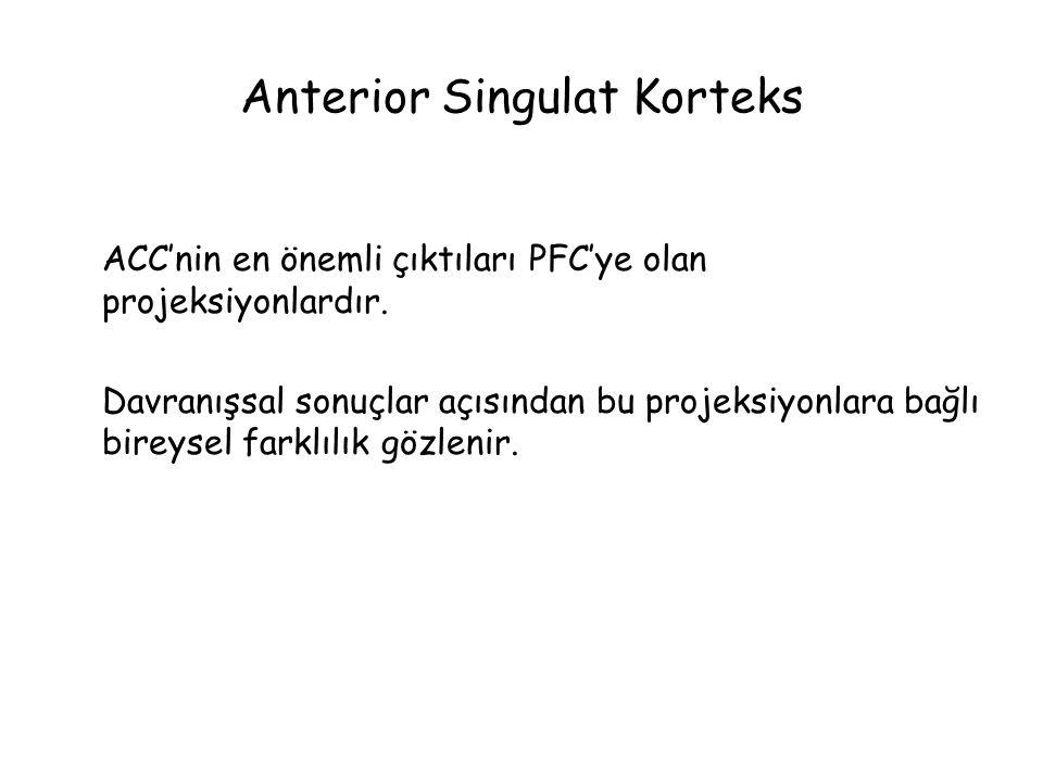Anterior Singulat Korteks ACC'nin en önemli çıktıları PFC'ye olan projeksiyonlardır.