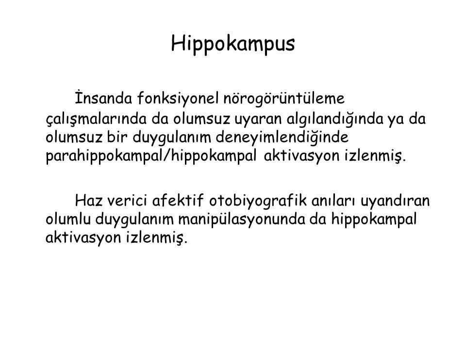 Hippokampus İnsanda fonksiyonel nörogörüntüleme çalışmalarında da olumsuz uyaran algılandığında ya da olumsuz bir duygulanım deneyimlendiğinde parahippokampal/hippokampal aktivasyon izlenmiş.