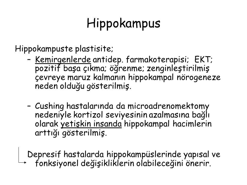 Hippokampuste plastisite; –Kemirgenlerde antidep.