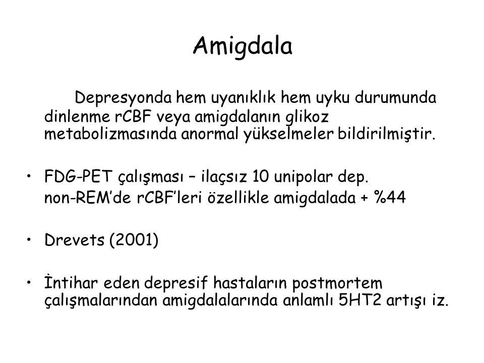 Amigdala Depresyonda hem uyanıklık hem uyku durumunda dinlenme rCBF veya amigdalanın glikoz metabolizmasında anormal yükselmeler bildirilmiştir.