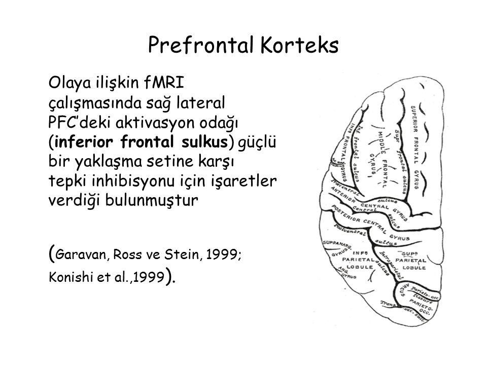 Prefrontal Korteks Olaya ilişkin fMRI çalışmasında sağ lateral PFC'deki aktivasyon odağı (inferior frontal sulkus) güçlü bir yaklaşma setine karşı tepki inhibisyonu için işaretler verdiği bulunmuştur ( Garavan, Ross ve Stein, 1999; Konishi et al.,1999 ).