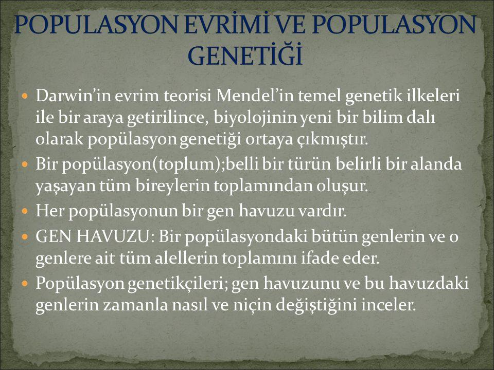 Darwin'in evrim teorisi Mendel'in temel genetik ilkeleri ile bir araya getirilince, biyolojinin yeni bir bilim dalı olarak popülasyon genetiği ortaya çıkmıştır.