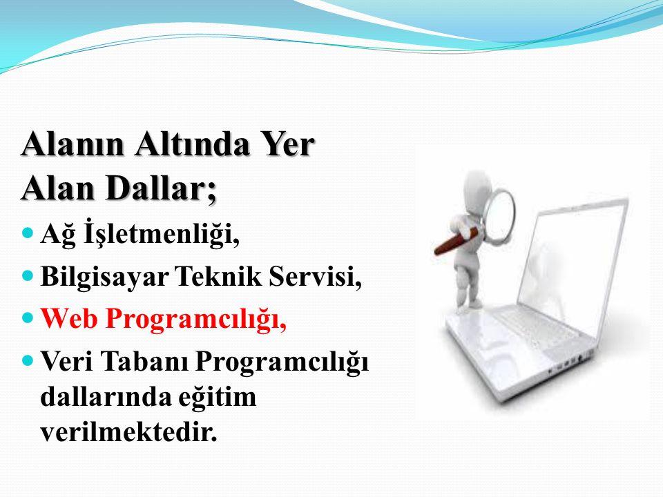 Alanın Altında Yer Alan Dallar; Ağ İşletmenliği, Bilgisayar Teknik Servisi, Web Programcılığı, Veri Tabanı Programcılığı dallarında eğitim verilmektedir.
