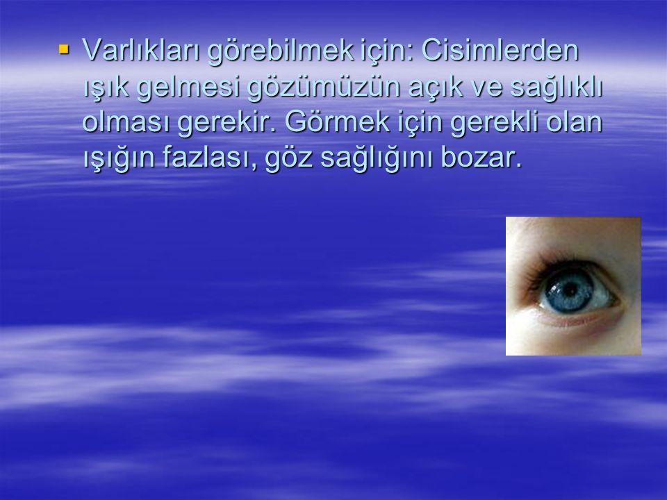  Görme duyusu organı gözdür. Gündüz de olsa gece de olsa gözümüz kapalı iken çevremizdeki varlıkları göremeyiz.