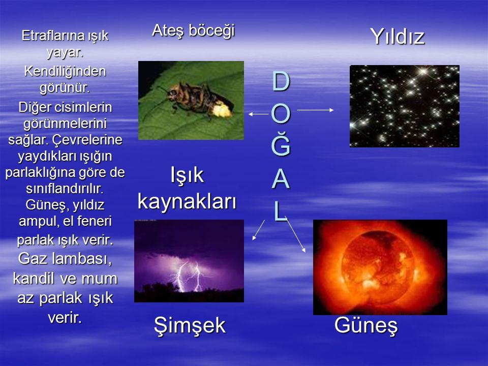 D O Ğ A L D O Ğ A L Yıldız Işık kaynakları Ateş böceği Ateş böceği Güneş Şimşek Şimşek Etraflarına ışık yayar.