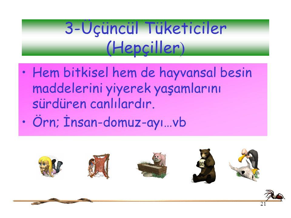 3-Üçüncül Tüketiciler (Hepçiller ) Hem bitkisel hem de hayvansal besin maddelerini yiyerek yaşamlarını sürdüren canlılardır. Örn; İnsan-domuz-ayı…vb 2