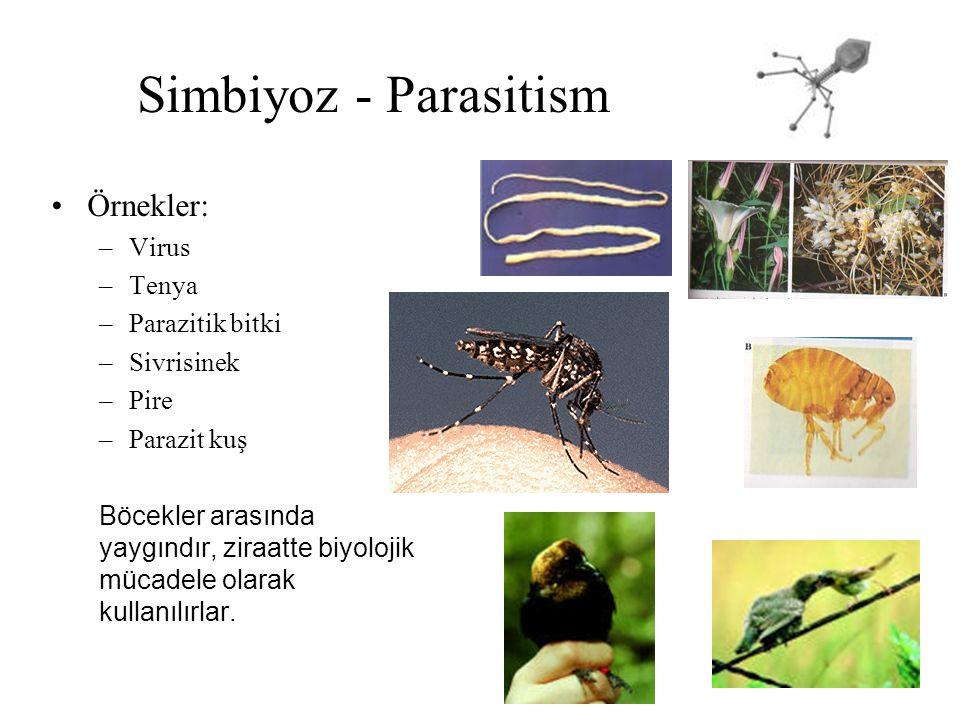 Simbiyoz - Parasitism Örnekler: –Virus –Tenya –Parazitik bitki –Sivrisinek –Pire –Parazit kuş Böcekler arasında yaygındır, ziraatte biyolojik mücadele