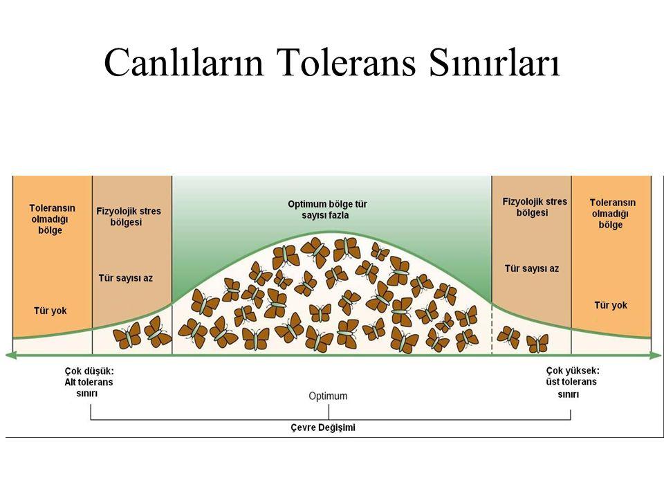 Canlıların Tolerans Sınırları