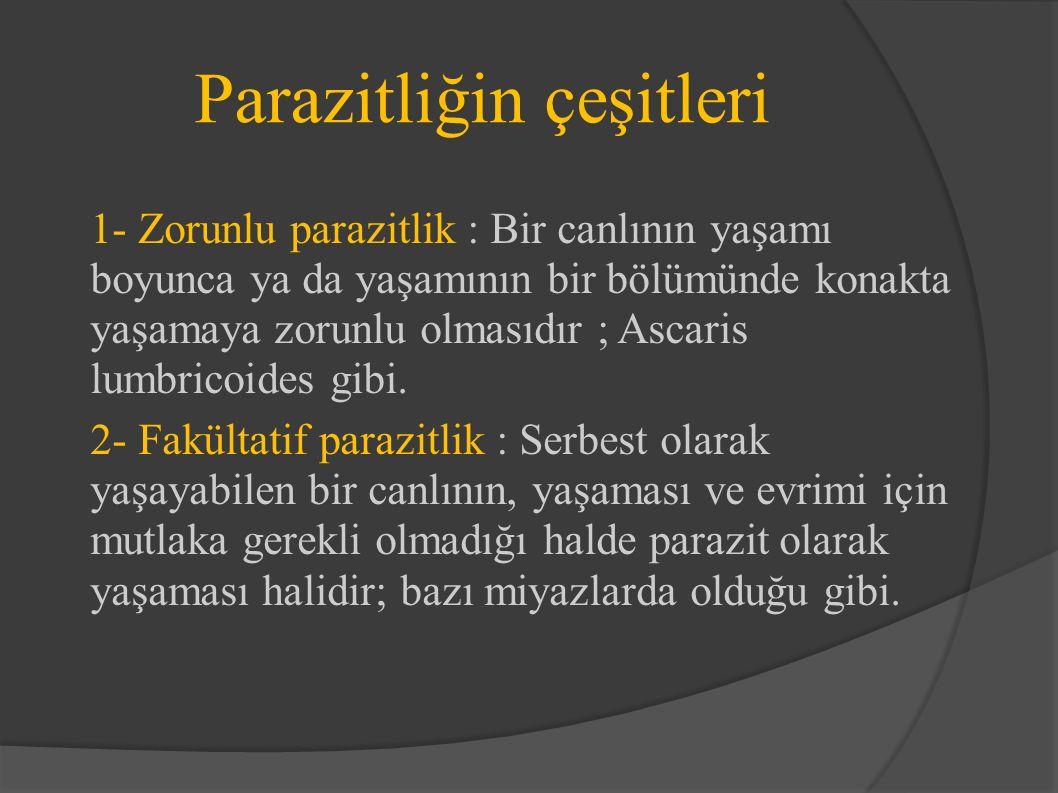 Parazitliğin çeşitleri 1- Zorunlu parazitlik : Bir canlının yaşamı boyunca ya da yaşamının bir bölümünde konakta yaşamaya zorunlu olmasıdır ; Ascaris lumbricoides gibi.