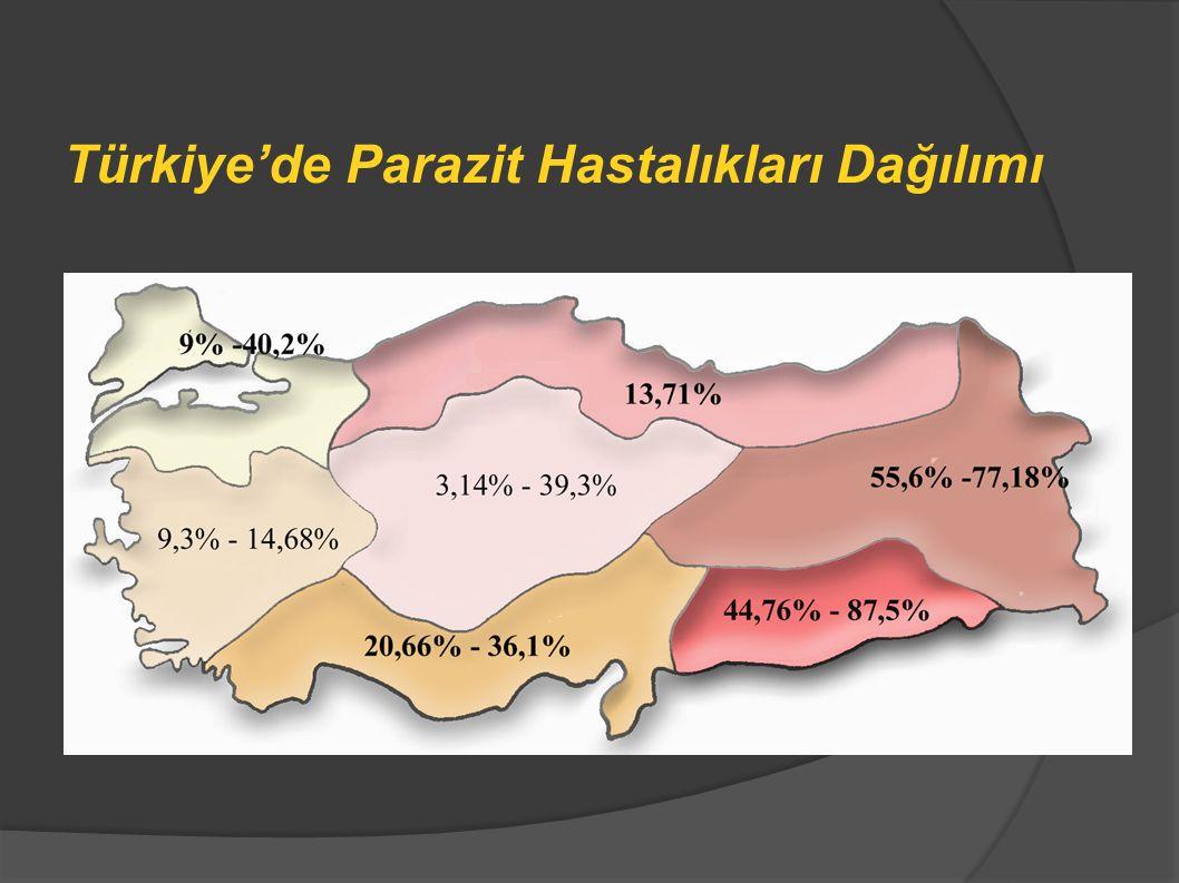 Türkiye'de Parazit Hastalıkları Dağılımı