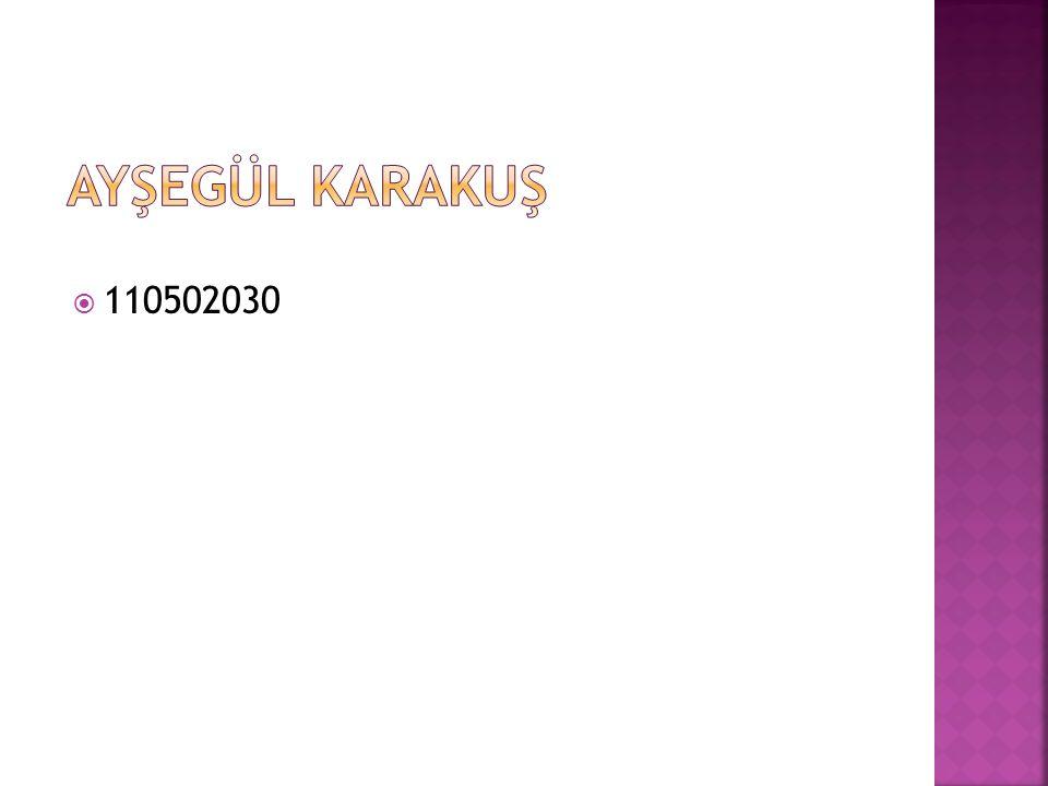  110502030