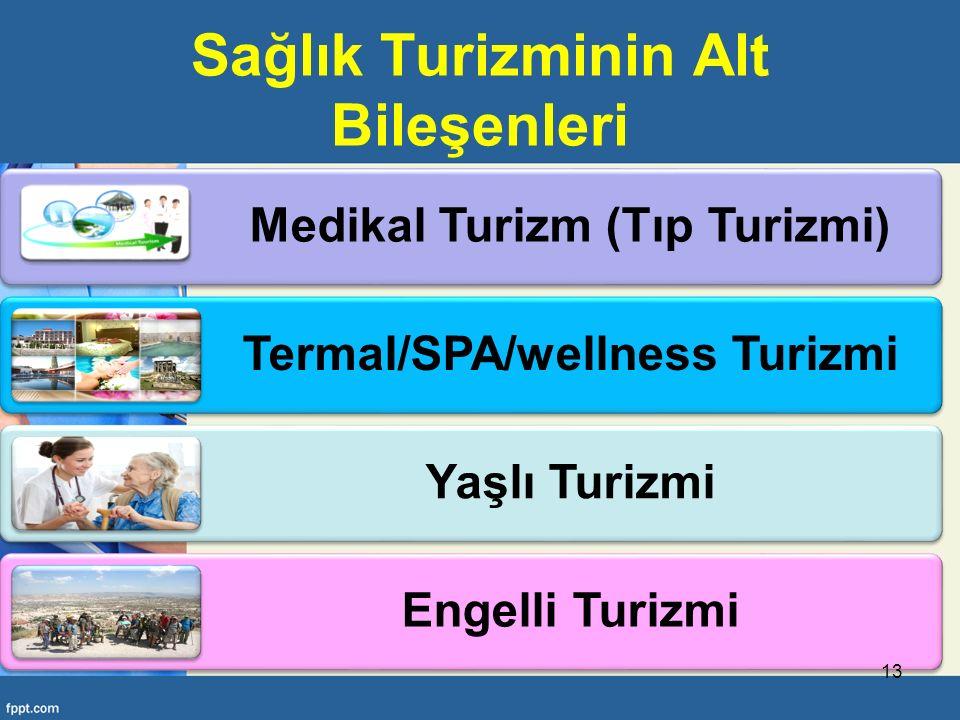 Sağlık Turizminin Alt Bileşenleri Medikal Turizm (Tıp Turizmi) Termal/SPA/wellness Turizmi Yaşlı Turizmi Engelli Turizmi 13