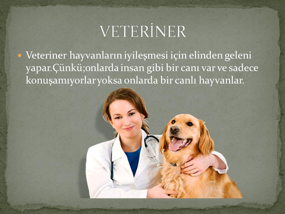 Veteriner hayvanların iyileşmesi için elinden geleni yapar.Çünkü;onlarda insan gibi bir canı var ve sadece konuşamıyorlar yoksa onlarda bir canlı hayvanlar.