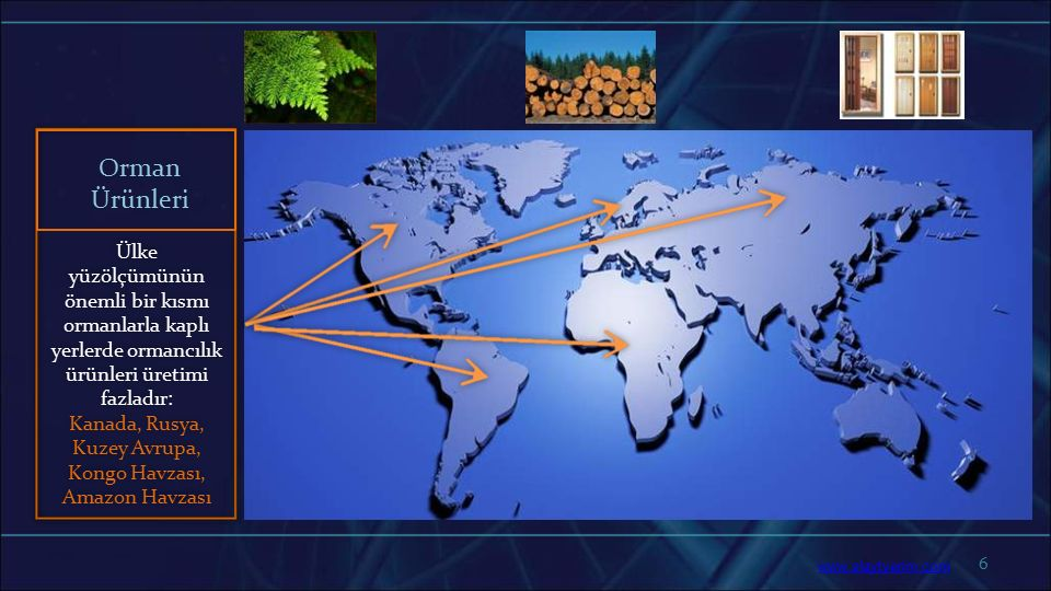 6 Ülke yüzölçümünün önemli bir kısmı ormanlarla kaplı yerlerde ormancılık ürünleri üretimi fazladır: Kanada, Rusya, Kuzey Avrupa, Kongo Havzası, Amazo