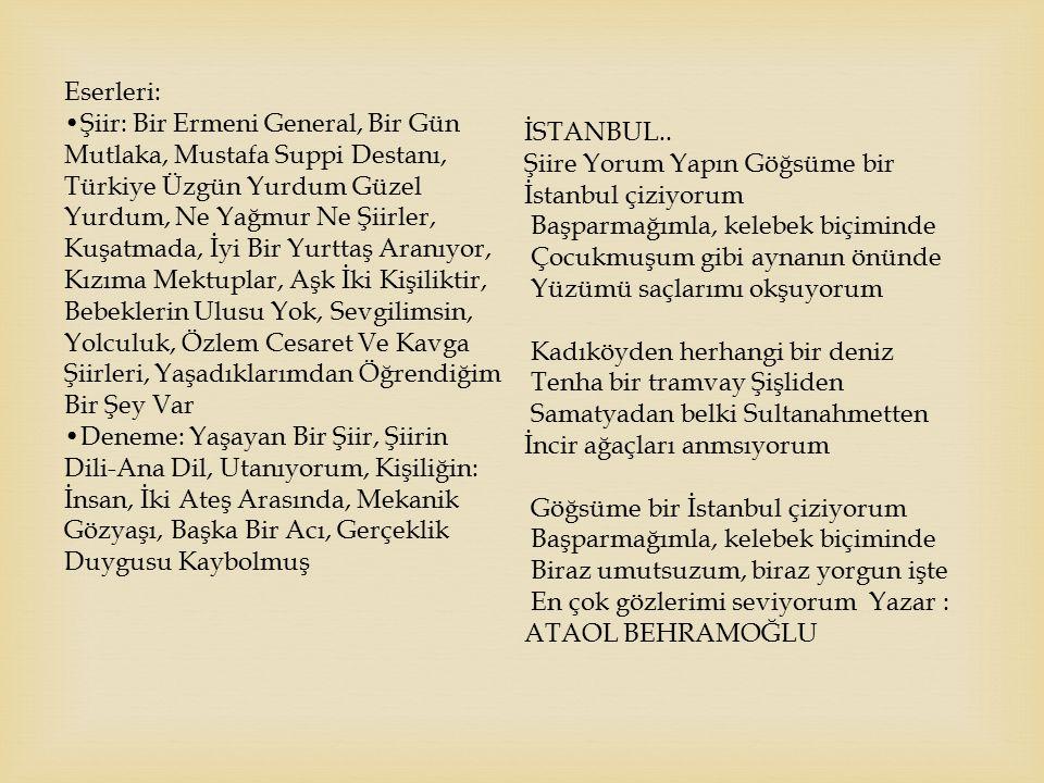Eserleri: Şiir: Bir Ermeni General, Bir Gün Mutlaka, Mustafa Suppi Destanı, Türkiye Üzgün Yurdum Güzel Yurdum, Ne Yağmur Ne Şiirler, Kuşatmada, İyi Bi