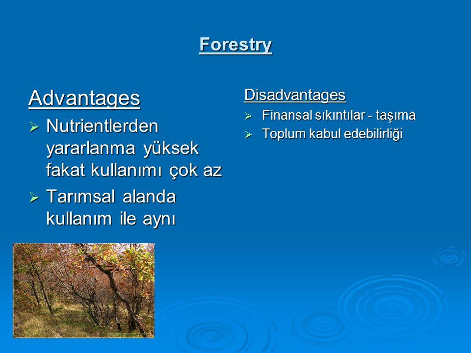 Forestry Advantages  Nutrientlerden yararlanma yüksek fakat kullanımı çok az  Tarımsal alanda kullanım ile aynı Disadvantages  Finansal sıkıntılar - taşıma  Toplum kabul edebilirliği