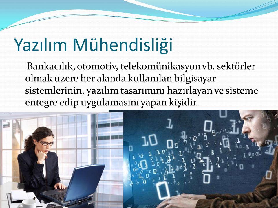 Yazılım Mühendisliği Bankacılık, otomotiv, telekomünikasyon vb.