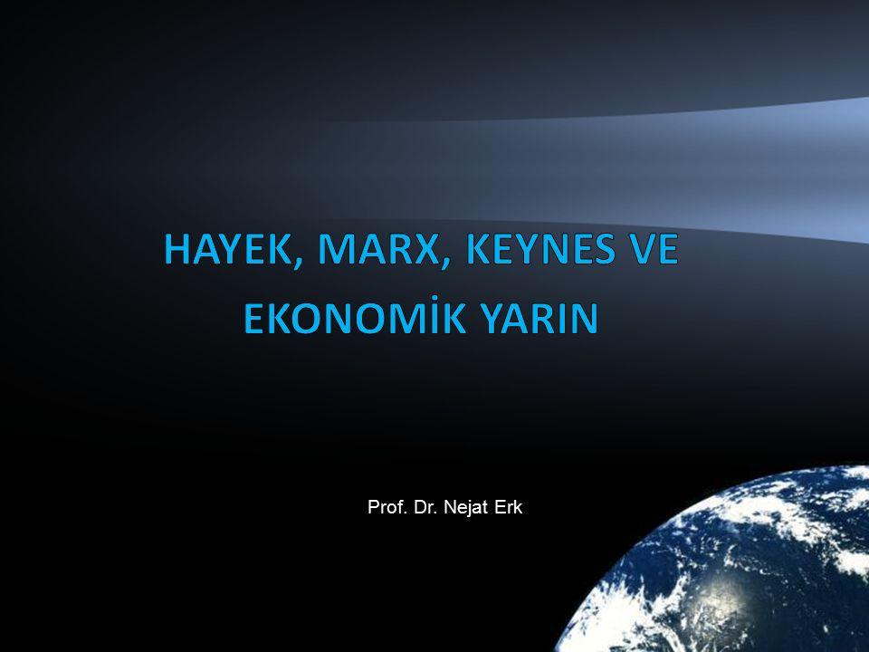 Prof. Dr. Nejat Erk