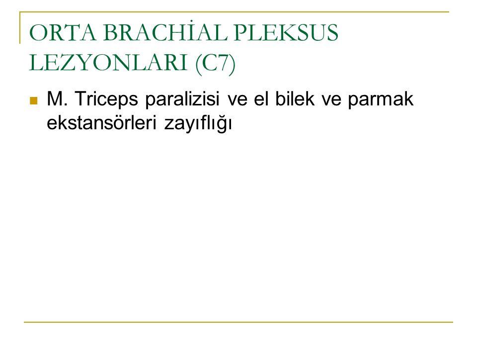 ORTA BRACHİAL PLEKSUS LEZYONLARI (C7) M. Triceps paralizisi ve el bilek ve parmak ekstansörleri zayıflığı
