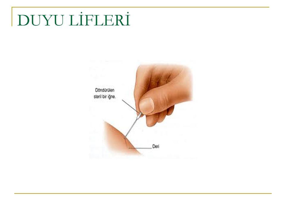Sıvı dengesi ve atrofinin önlenmesi Elevasyonda ayak bileği NEH
