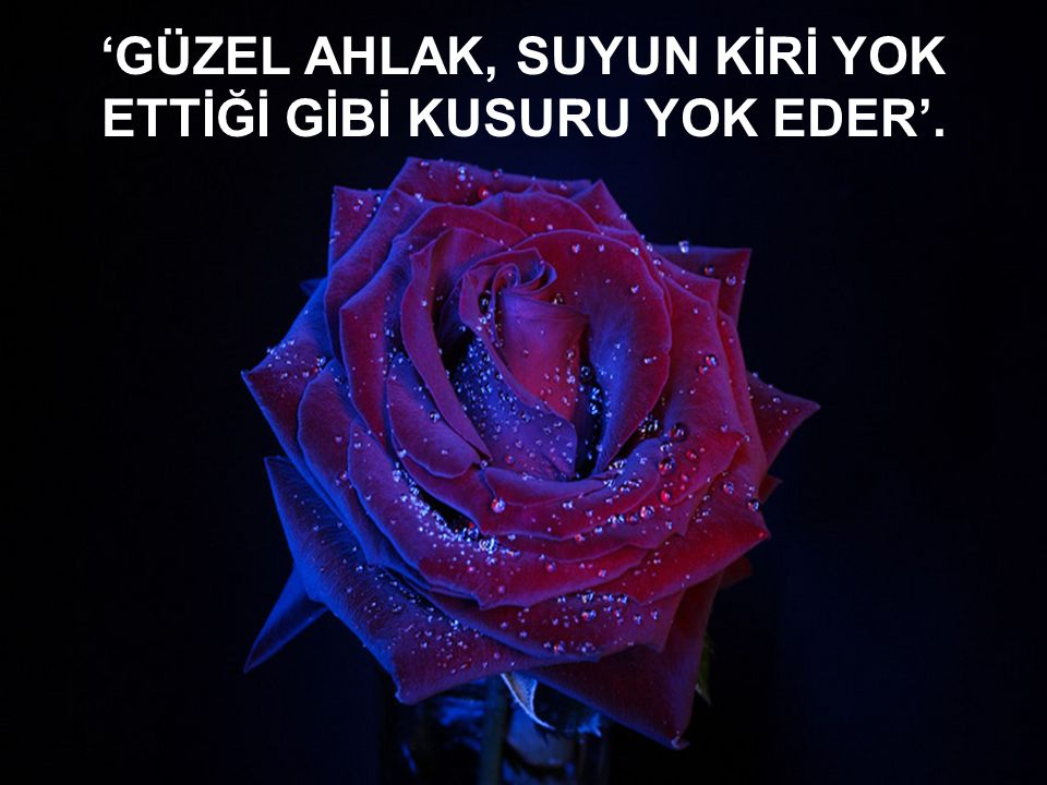'GÜZEL AHLAK, SUYUN KİRİ YOK ETTİĞİ GİBİ KUSURU YOK EDER'.
