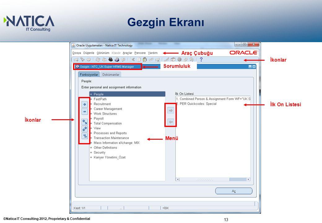 ©Natica IT Consulting 2012, Proprietary & Confidential 13 Gezgin Ekranı Araç Çubuğu Sorumluluk Menü İlk On Listesi İkonlar