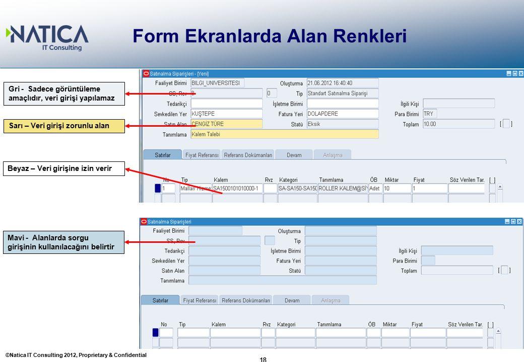 ©Natica IT Consulting 2012, Proprietary & Confidential 18 Form Ekranlarda Alan Renkleri 18 Beyaz – Veri girişine izin verir Sarı – Veri girişi zorunlu