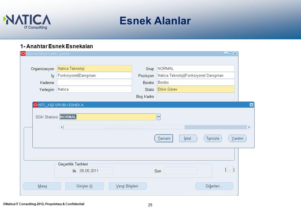 ©Natica IT Consulting 2012, Proprietary & Confidential Esnek Alanlar 29 1- Anahtar Esnek Esnekalan