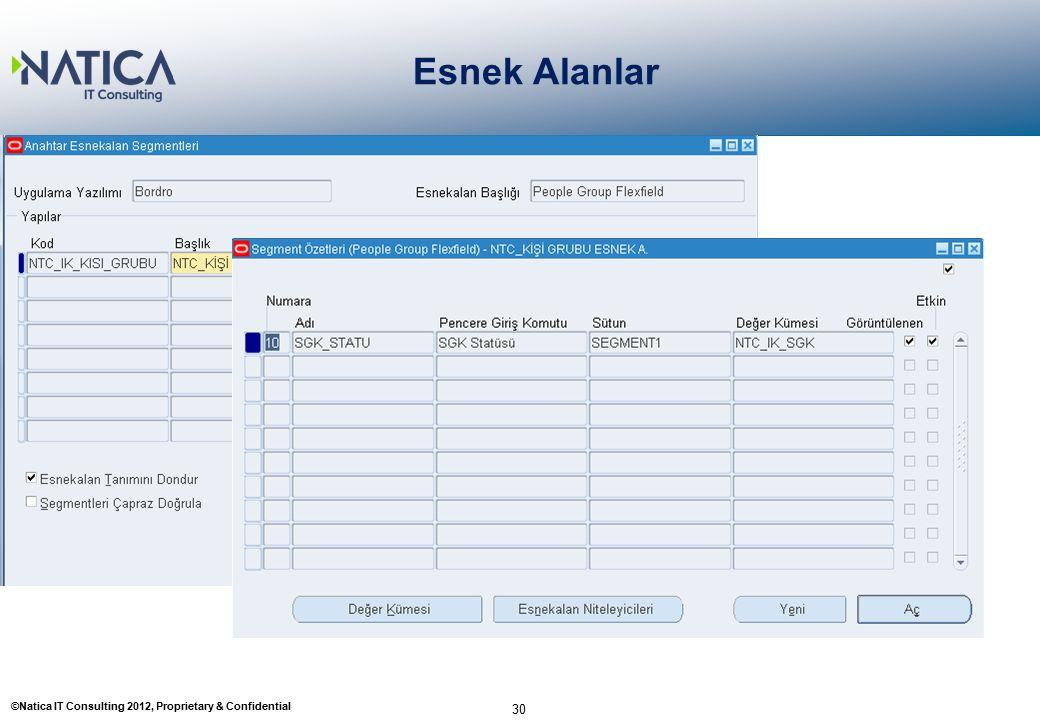 ©Natica IT Consulting 2012, Proprietary & Confidential Esnek Alanlar 30 1- Anahtar Esnek Esnekalan Tanımlama