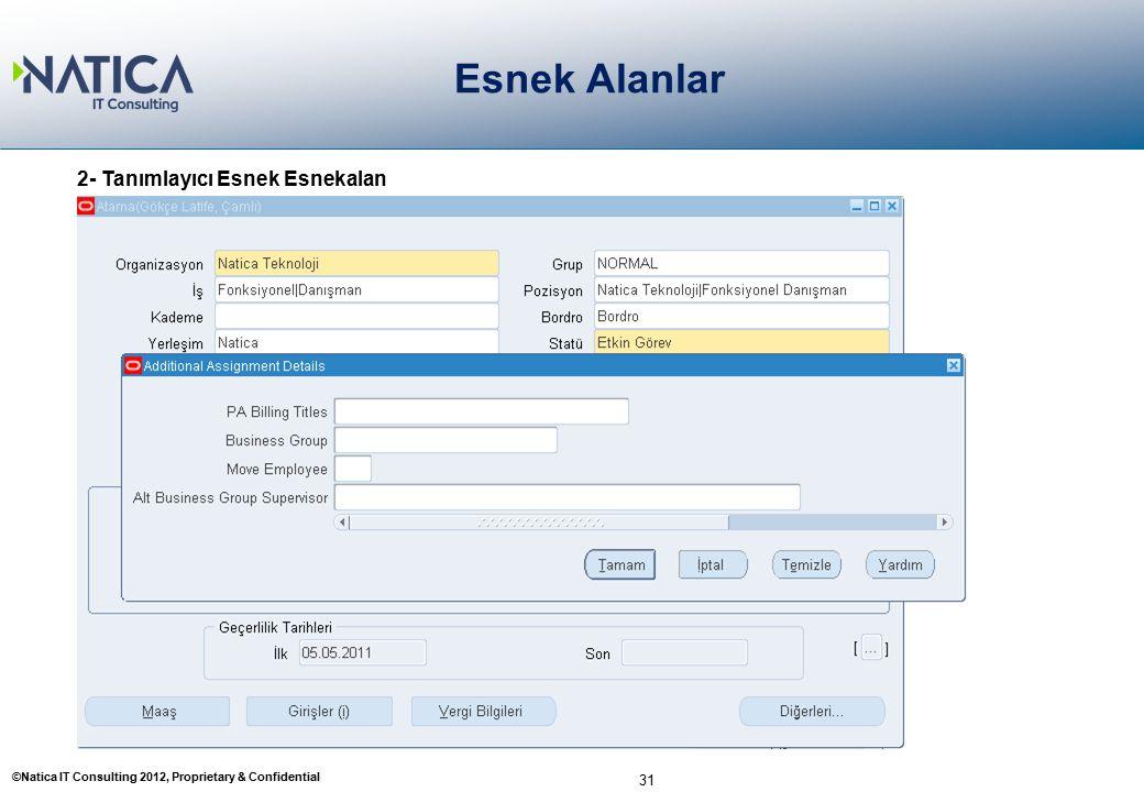 ©Natica IT Consulting 2012, Proprietary & Confidential Esnek Alanlar 31 2- Tanımlayıcı Esnek Esnekalan