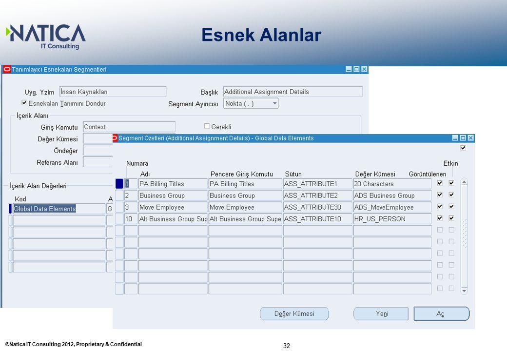 ©Natica IT Consulting 2012, Proprietary & Confidential Esnek Alanlar 32 2- Tanımlayıcı Esnek Esnekalan Tanımlama