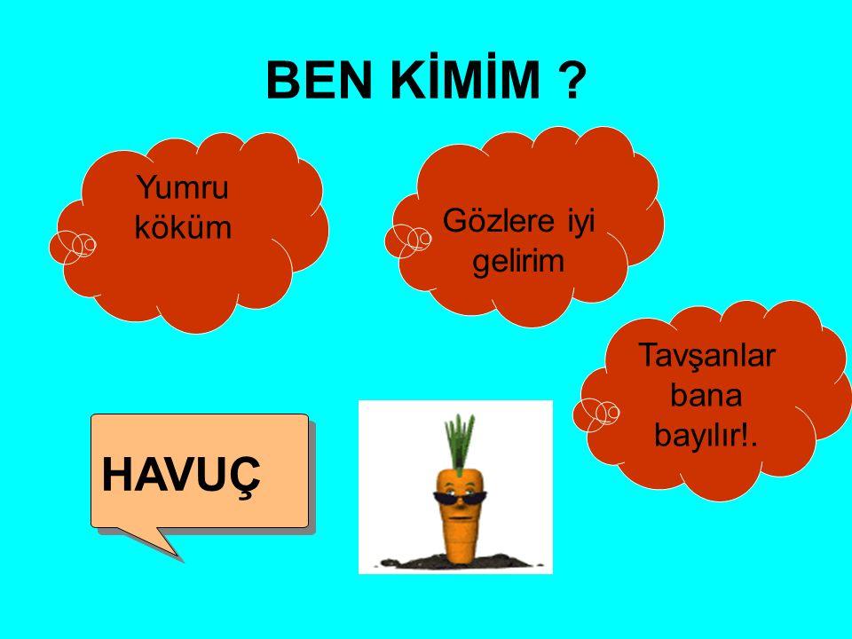 Soru 2: Bitkilerin solunum yapan organı hangisidir? YAPRAK