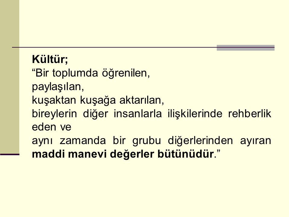 Türkiye'nin güç mesafesi ve maskulin/feminin yaklaşım ve Belirsizlikten kaçınma boyutundaki konumu şu şekilde yorumlanabilir: yüksek belirsizlikten kaçınma ve feminin alanda yer almaktadır.