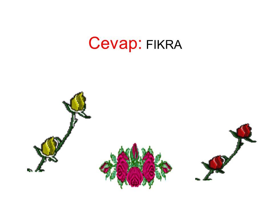 Cevap: FIKRA