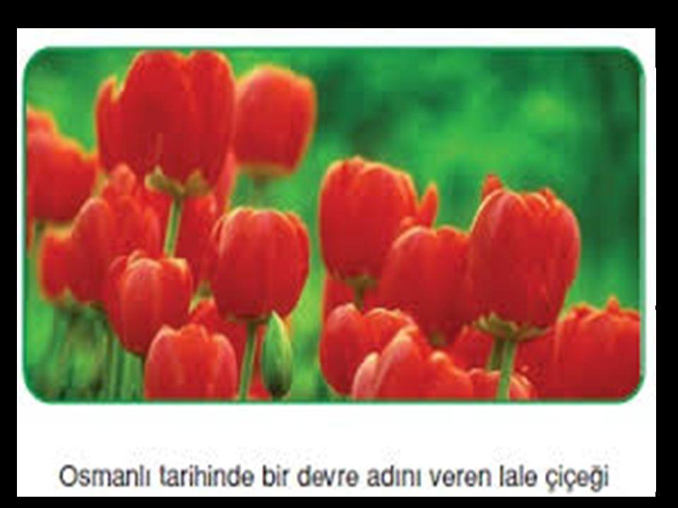 Zamanın ünlü şairi Nedim'dir.Bu neşeli devri şiirlerinde terennüm etmiştir.