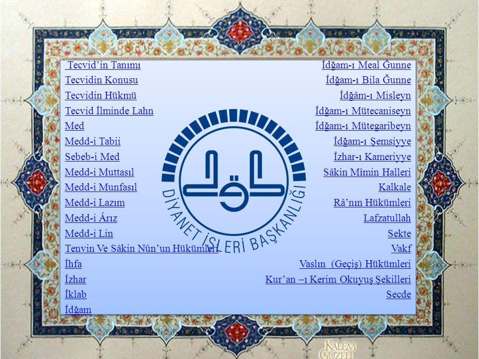 Sekte He'leri (Hâ-i Sekteler): Kur'ân-ı Kerîm'de normal sektelerin dışında dokuz yerde, yedi kelime üzerinde daha sekte yapılır.