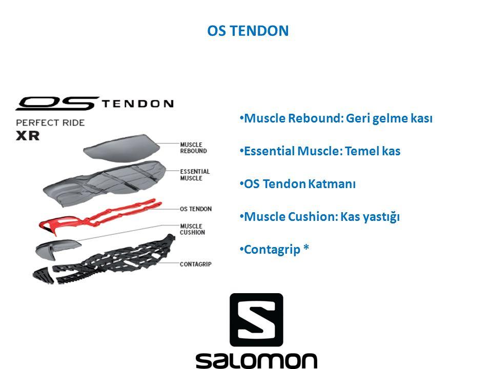 OS TENDON Muscle Rebound: Geri gelme kası Essential Muscle: Temel kas OS Tendon Katmanı Muscle Cushion: Kas yastığı Contagrip *