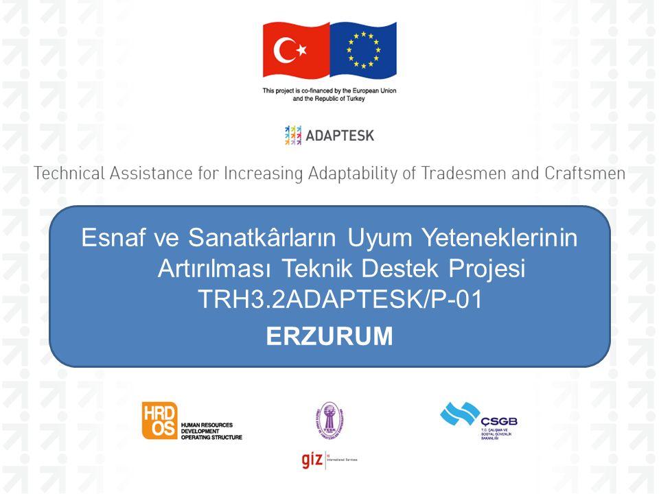Esnaf ve Sanatkârların Uyum Yeteneklerinin Artırılması Teknik Destek Projesi TRH3.2ADAPTESK/P-01 ERZURUM