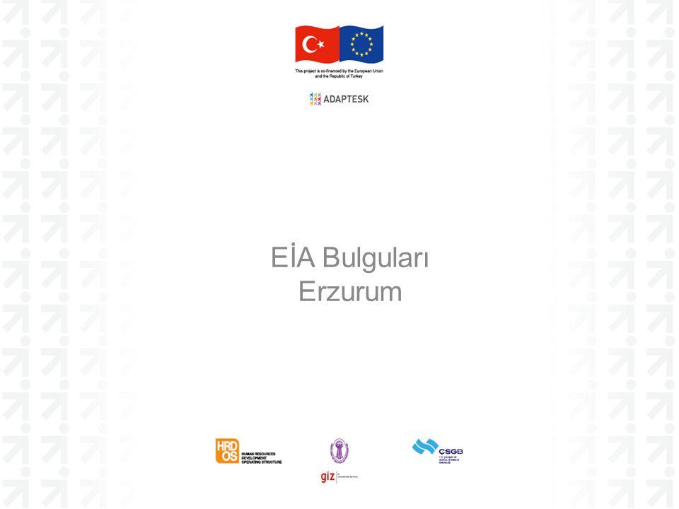 EİA Bulguları Erzurum
