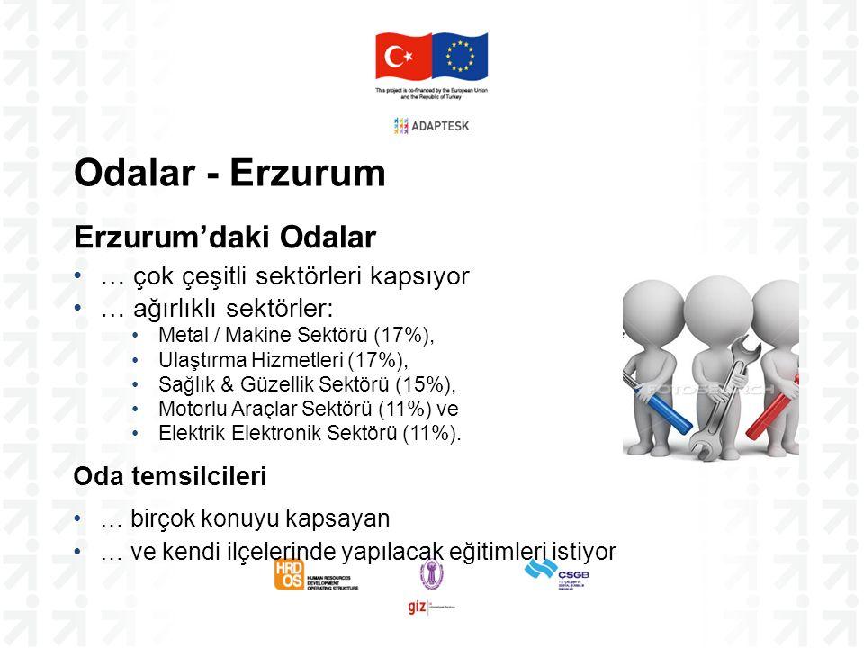 Odalar - Erzurum Erzurum'daki Odalar … çok çeşitli sektörleri kapsıyor … ağırlıklı sektörler: Metal / Makine Sektörü (17%), Ulaştırma Hizmetleri (17%)