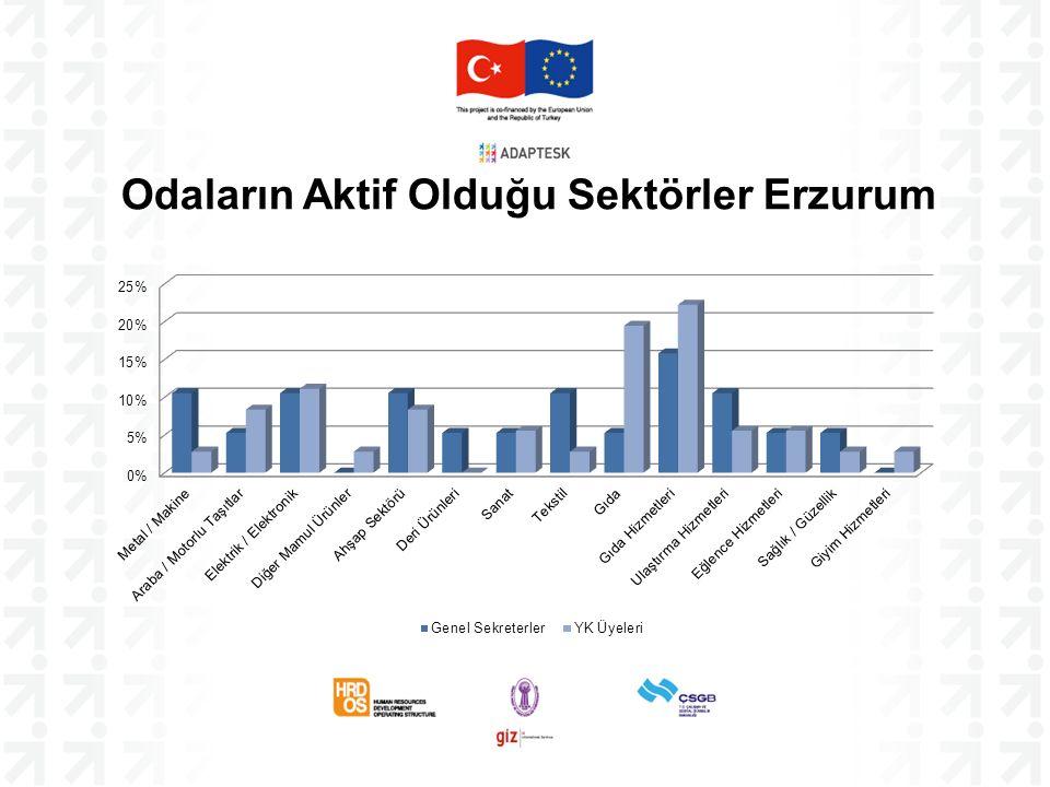 Odaların Aktif Olduğu Sektörler Erzurum