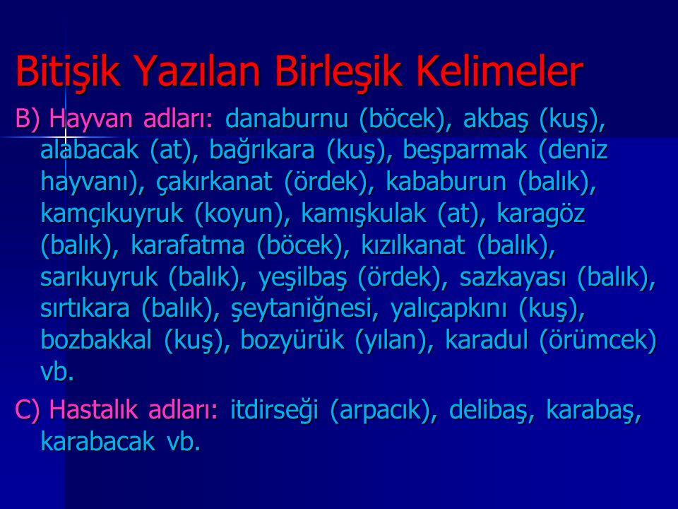 Bitişik Yazılan Birleşik Kelimeler B) Hayvan adları: danaburnu (böcek), akbaş (kuş), alabacak (at), bağrıkara (kuş), beşparmak (deniz hayvanı), çakır